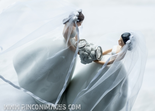 Cute Mrs. & Mrs Cake toppers -LGBT, Same Sex Wedding Photographer Puerto Rico
