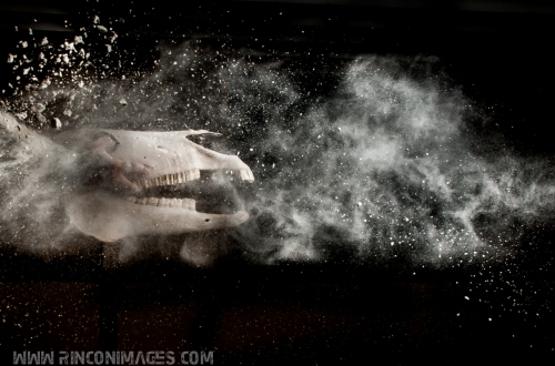 Creative Portrait Photography - Puerto Rico Photographer