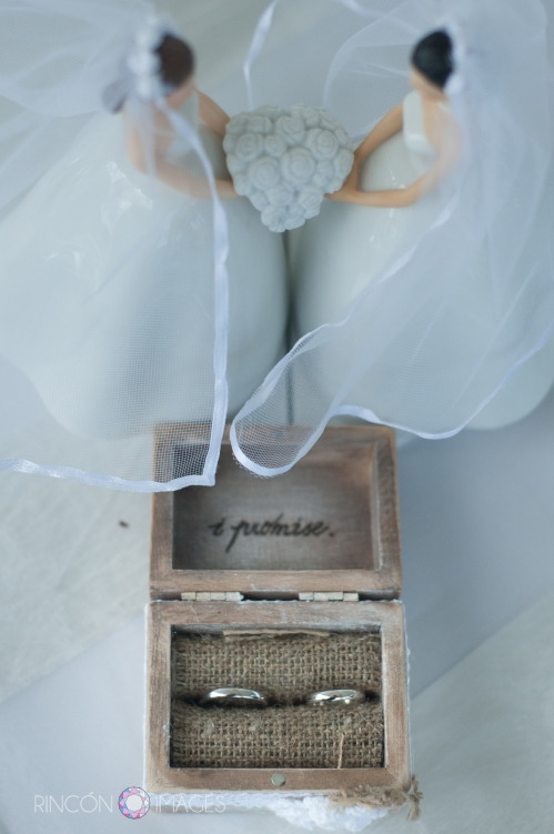 Ariana and Elizabeths wedding rings were kept in a beautiful 'I promise' box that was lined with burlap. The two bride figurines were a beautiful addition to their cake table decorations.