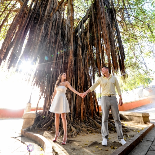 I love using this banyan tree in photographs. It is a great location right on Paseo de la Princesa. The tall tree provides lots of shade to keep things cool, and the long branches make beautiful patterns of light on the ground. Its a great spot for wedding and engagement photography in San Juan, Puerto Rico. Photography by Rincon Images wedding photography Puerto Rico.