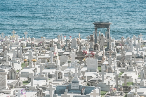 The Santa María Magdalena de Pazzis Cemetery is located in Viejo San Juan, Puerto Rico. It is a great place to take photographs and has an amazing number of cemetery statues.